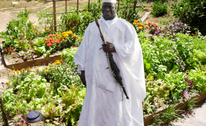 Does Gambia's Jammeh Have Green Fingers?