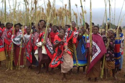 The annual reed dance (file photo).