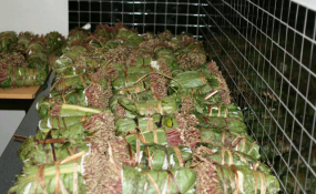 the impact of chewing khat and We studied the effect of chewing khat leaves on human mood by using a  standard questionnaire method, the hospital anxiety and depression scale.