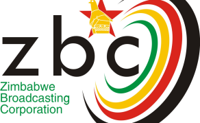 Zimbabwe Broadcaster Manager Fired Over Husband's #ThisFlag Links