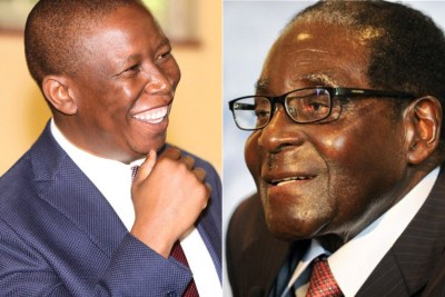 Left: Economic Freedom Fighters leader Julius Malema. Right: Zimbabwean President Robert Mugabe (file photo).