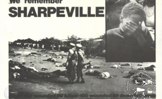 Home   allAfrica com     Years Since Sharpeville   South Africa Marks Human Rights Day
