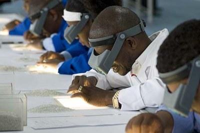 Sorting diamonds in Botswana (file photo).