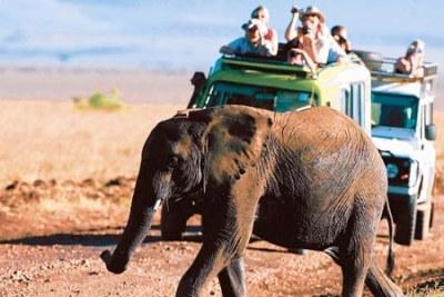 Kenyan tourism.