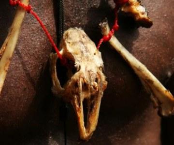 Benin: Voodoo Rituals to Calm the Spirits