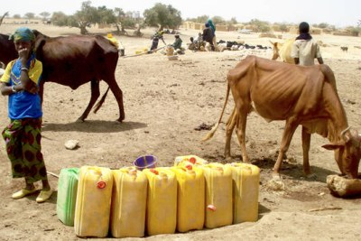 Food crisis in the Sahel (file photo).