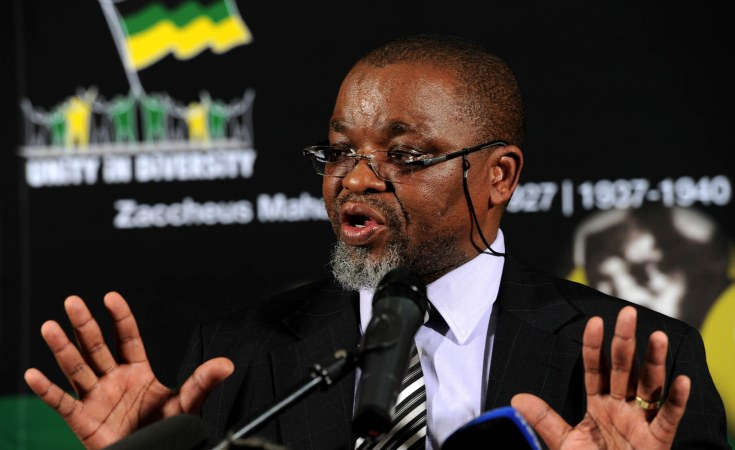South Africa Bold Defiance Against Mantashe In Anc Nelson
