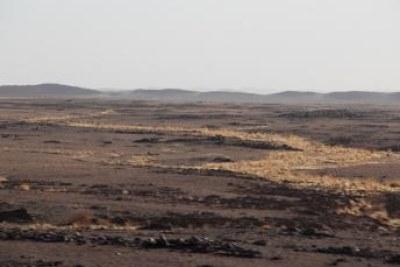 Région de Tessalit, au nord-est du Mali.