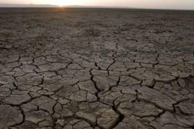 La situation de la sécurité alimentaire au Sahel reste précaire