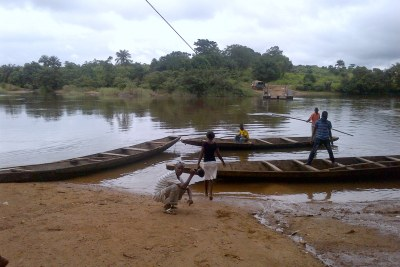Small boats crossing a remote border between Guinea and Liberia during the Ebola outbreak show how easily the virus can jump from one country to another (file photo).