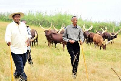 Uganda President Museveni (L) and Rwanda President Paul Kagame (file photo).