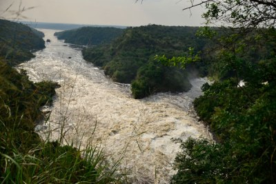 Magnificent. A View of Murchison Falls on the Victoria Nile River in the Murchison Falls National Park in Masindi District.