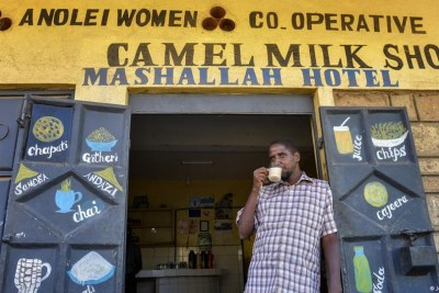 Camel milk takes on many different flavors (file photo).