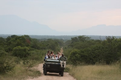 Safari in the Kruger National Park (file photo).