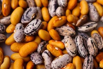 Bean seeds (file photo).