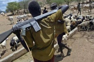Armed herdsmen.