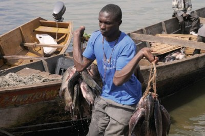 A fisherman at the Ggaba landing site recently.