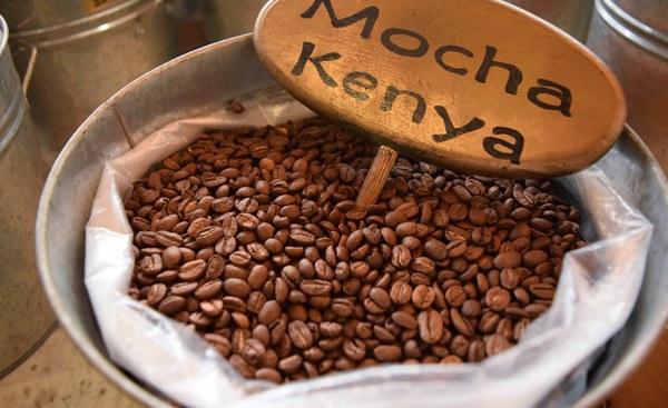 Kenya's Grinding Coffee Reforms Leaves Bitter Taste - allAfrica.com