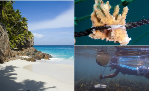 Seychelles Issues World's First Blue Bond to Fund Fisheries