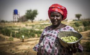L'ONU s'inquiète de la progression de la faim en Afrique