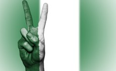 How to Move Towards a More Peaceful Nigeria