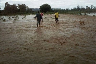 Residents search for the body of a woman who drowned in River Malaba