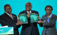 'Fight Africa's New Revolution With Ideas, Hard Work, Investment'