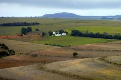Farmland in the Overberg region of the Western Cape of South Africa