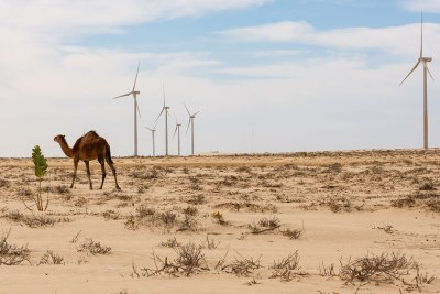 A wind farm on the outskirts of Nouakchott, the capital of Mauritania, is aimed at giving more people access to renewable energy sources.