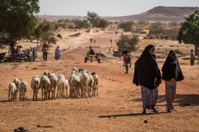 Les gens marchent sur une route dans la région de Tillaberi, dans l'ouest du Niger.