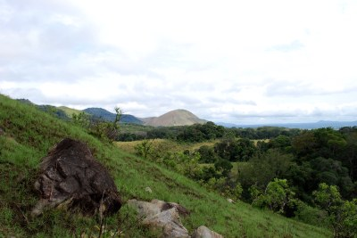 Gabon has created13 national parks, preservingmuch of its pristine rainforest since the early 2000s.