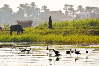 The Nile River has delivered fresh water, fed agriculture, and supported livelihoods in Egypt, Ethiopia and Sudan for thousands of years.