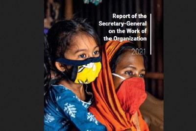 UN report (file photo).